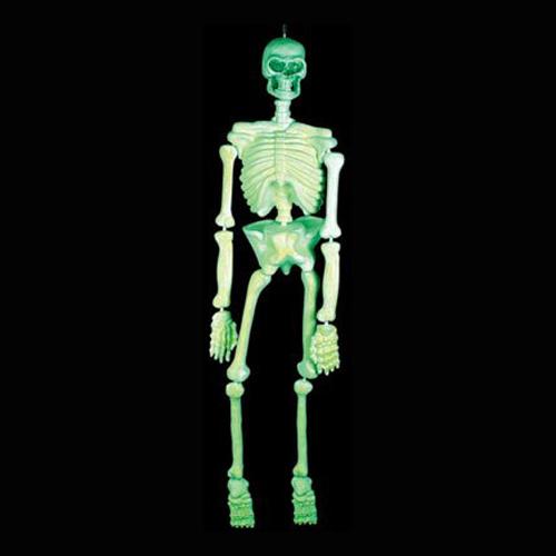Skelett Prop