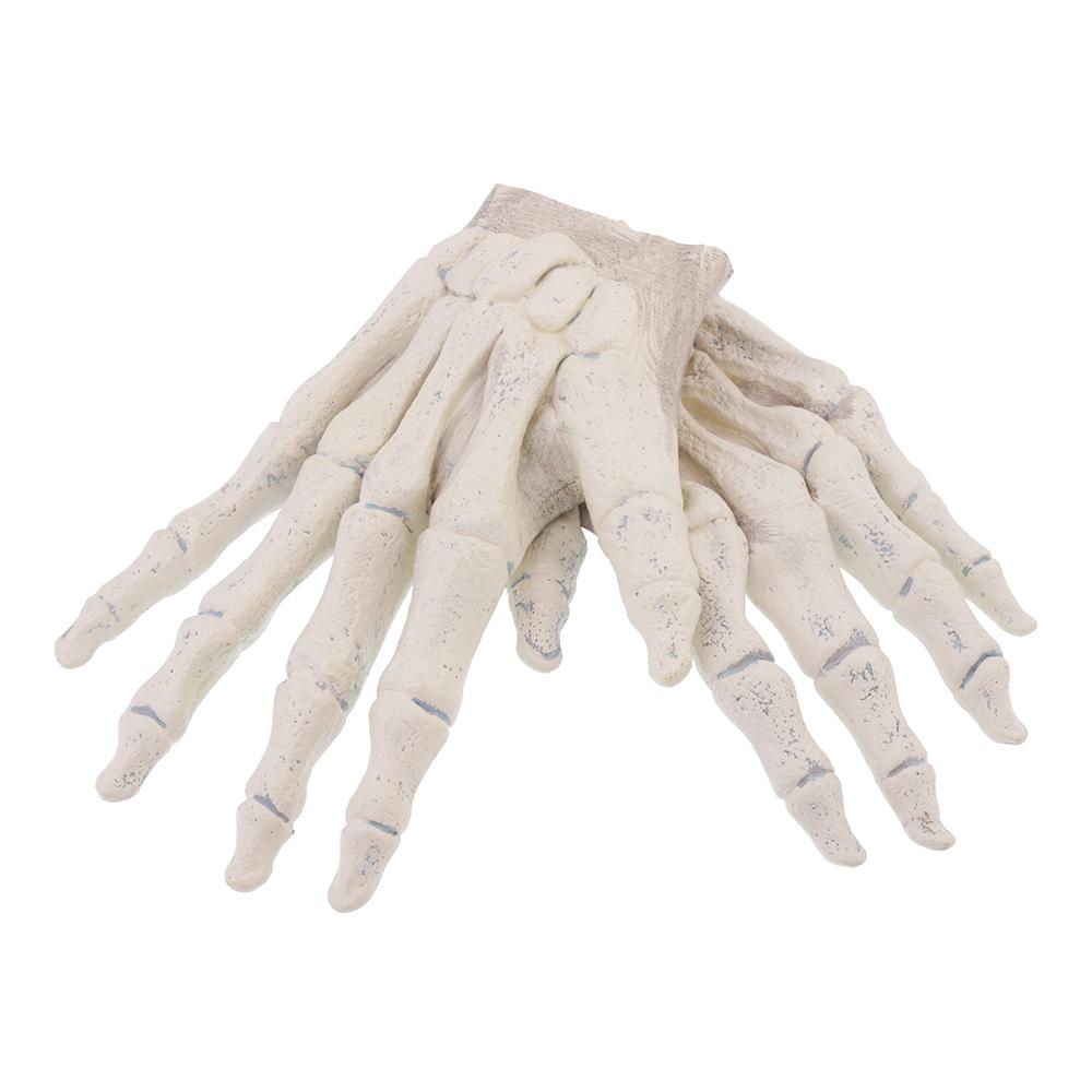 Skeletthänder Handskar