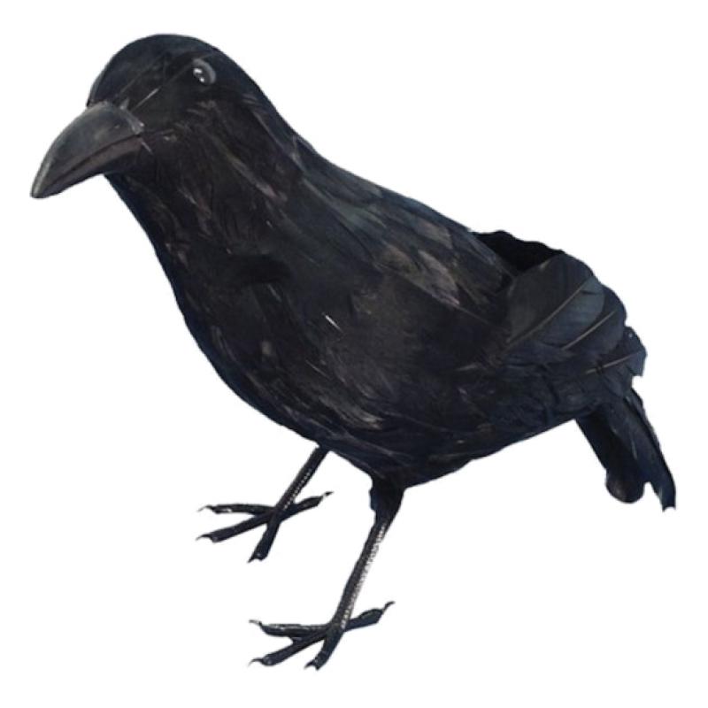 Fjäderkråka
