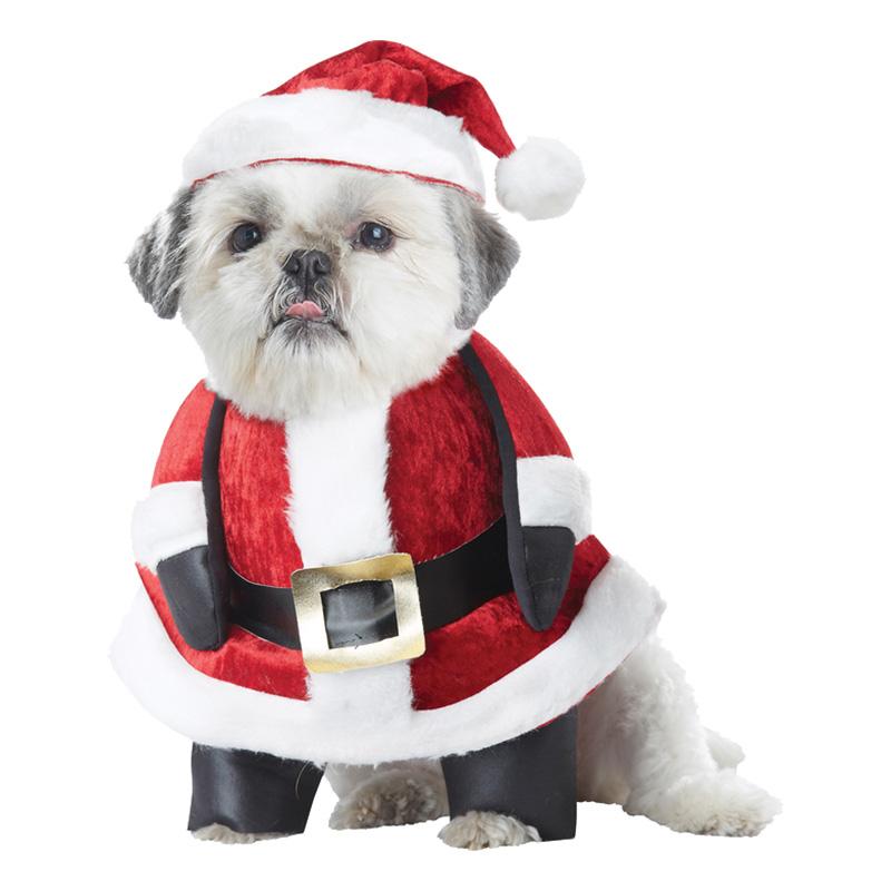 Maskeradkläder Vuxna - Jultomte Hund  - Small