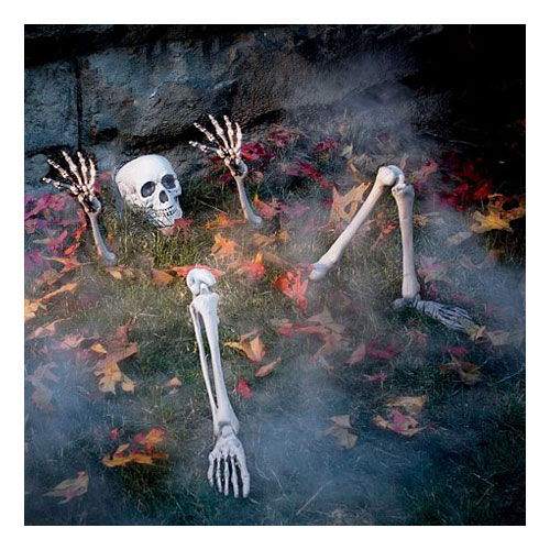 Skelett i Marken Prop